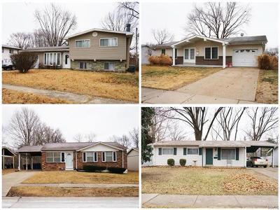 Single Family Home For Sale: 2522 Saddle Ridge