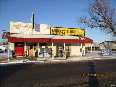 Shelbina MO Commercial For Sale: $99,500
