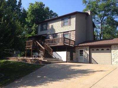 Hannibal MO Single Family Home For Sale: $170,000