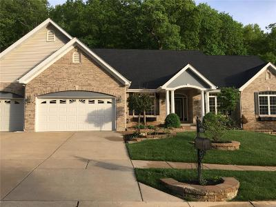 Single Family Home For Sale: 777 Southern Hills Drive