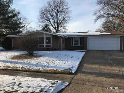 Single Family Home For Sale: 1425 Aintree Drive