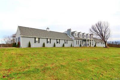 Cape Girardeau Single Family Home For Sale: 343 Graphite Lane