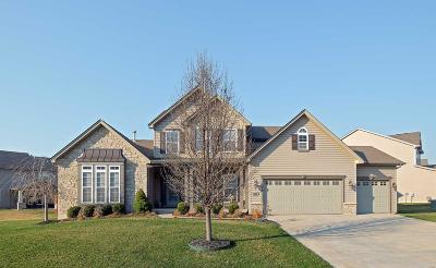 O'Fallon Single Family Home For Sale: 1507 Hunters Meadow