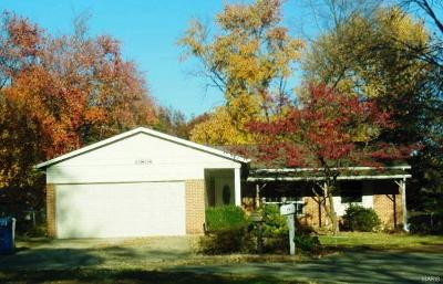 Single Family Home For Sale: 11804 Smoke Valley