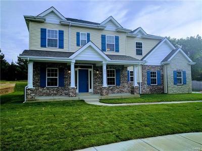 Sunset Hills Single Family Home For Sale: 12871 Weber Hill Rd