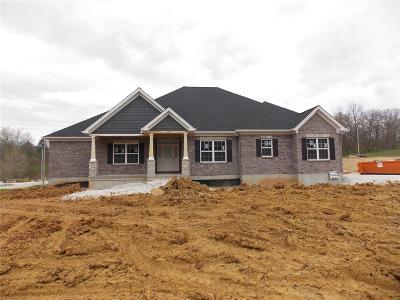 Flint Hill, St Paul Single Family Home For Sale: 101 Allen Ridge Drive