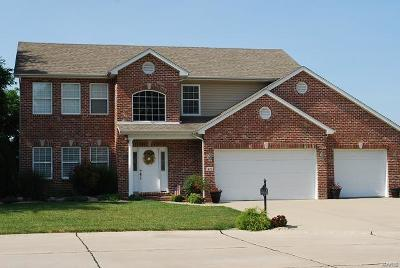 Maryville Single Family Home For Sale: 45 Oak Leaf Drive