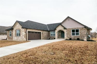 Swansea IL Single Family Home For Sale: $364,900