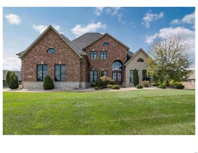 Stone Cliff Manor Single Family Home For Sale: 8424 Rock Ridge Court