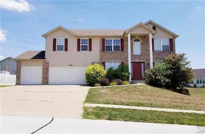 Dardenne Prairie, O Fallon Single Family Home For Sale: 2024 Dardenne Valley