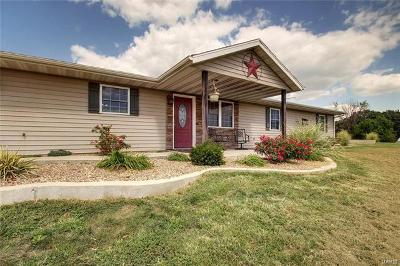 New London MO Single Family Home For Sale: $265,900