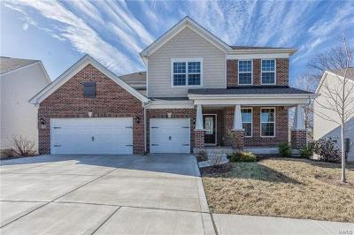 Dardenne Prairie, O Fallon Single Family Home For Sale: 320 Chestnut Creek Circle
