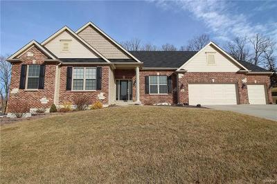 Wentzville Single Family Home For Sale: 136 Woodspur Drive