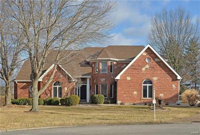 Weldon Spring Single Family Home For Sale: 53 Valentine Farm Lane