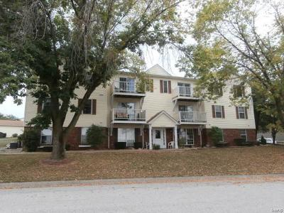 Hannibal MO Condo/Townhouse For Sale: $74,900