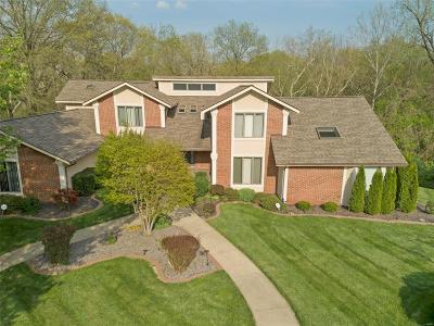 Belleville Single Family Home For Sale: 23 Castle Pointe Drive