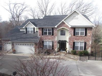Single Family Home For Sale: 15 Wild Horse Way