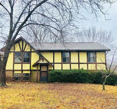 Cape Girardeau County Single Family Home For Sale: 1710 North Main Street