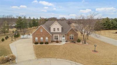 Waterloo Single Family Home For Sale: 1305 Dannehold Farms Drive