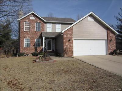 Edwardsville IL Single Family Home For Sale: $265,000