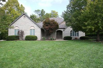 Maryville Single Family Home For Sale: 78 Santa Anita Drive