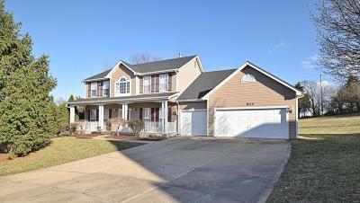 Ellisville Single Family Home For Sale: 804 Springbirch Court