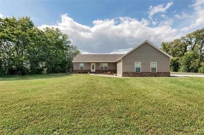 Edwardsville Single Family Home For Sale: 3703 Sand Rd.
