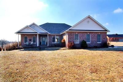Cape Girardeau County Single Family Home For Sale: 240 Tumbleweed Pass