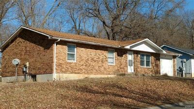 Cape Girardeau County Single Family Home For Sale: 58 Green Acres