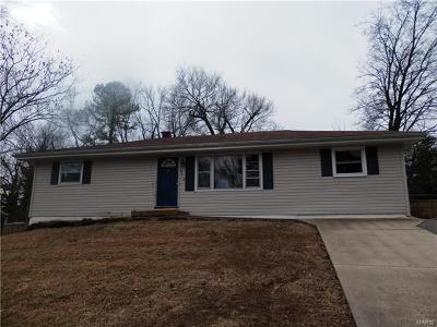 Single Family Home For Sale: 4212 Ringford Drive