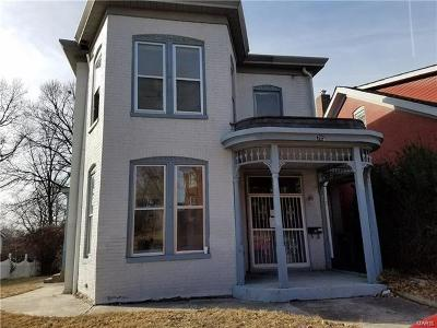 Belleville Single Family Home For Sale: 705 South Jackson Street