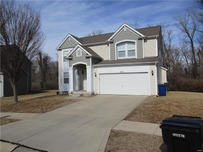 Single Family Home For Sale: 2635 Valley Brook Drive