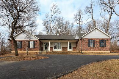 Single Family Home For Sale: 9361 Lincoln Drive