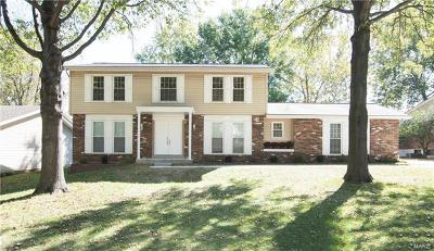 Single Family Home For Sale: 314 Windsor Spring Drive