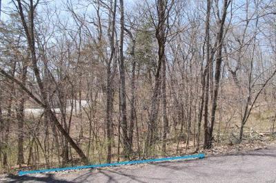 Lake Sherwood Residential Lots & Land For Sale: 851 Village Green Drive