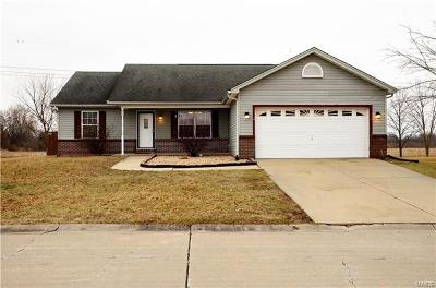 Belleville IL Single Family Home For Sale: $179,000