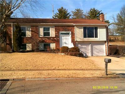 Single Family Home For Sale: 1265 Mautenne Drive