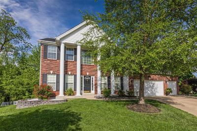O'Fallon Single Family Home For Sale: 668 Zumwalt Crossing