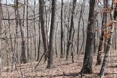 Lincoln County, St Charles County, St Louis City County, St Louis County, Warren County Residential Lots & Land For Sale: 1819 North Lake Sherwood Drive