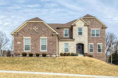 Chesterfield MO Single Family Home For Sale: $600,000