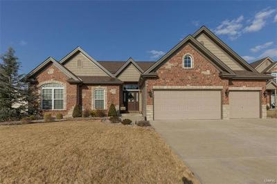 St Peters MO Single Family Home For Sale: $429,900