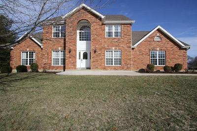 Belleville Single Family Home For Sale: 1719 10th Fairway Drive