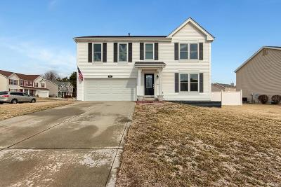 Fairview Heights Single Family Home For Sale: 801 Hawk View Court
