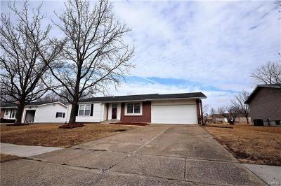 Lincoln County, Warren County Single Family Home For Sale: 313 Richmond Drive