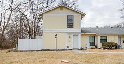 Single Family Home For Sale: 2404 Forest Shadows
