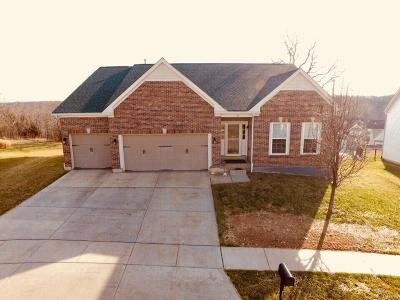 Wentzville Single Family Home For Sale: 137 Wilmer Valley Drive