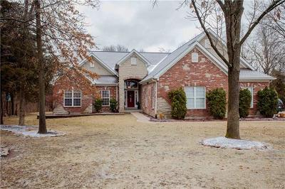 Wentzville Single Family Home For Sale: 2906 Eagle Pointe Drive
