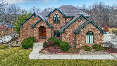 Edwardsville Single Family Home For Sale: 6616 Fox Creek Drive