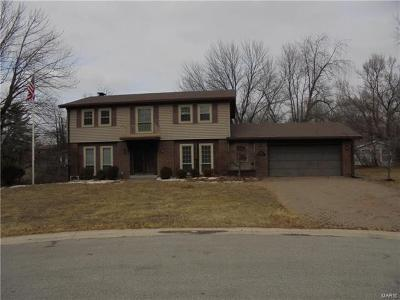 Fairview Heights Single Family Home For Sale: 181 Jubaka Drive