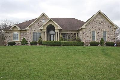 Caseyville Single Family Home For Sale: 910 Far Oaks Drive
